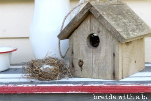 birdhouse-nest
