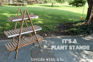 pre-plant-stand-final