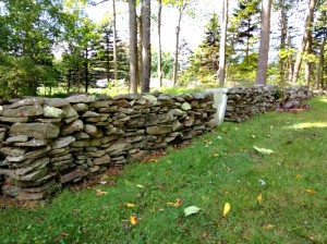 our stone wall - just beyond the barn - i can't resist a stone wall. . .