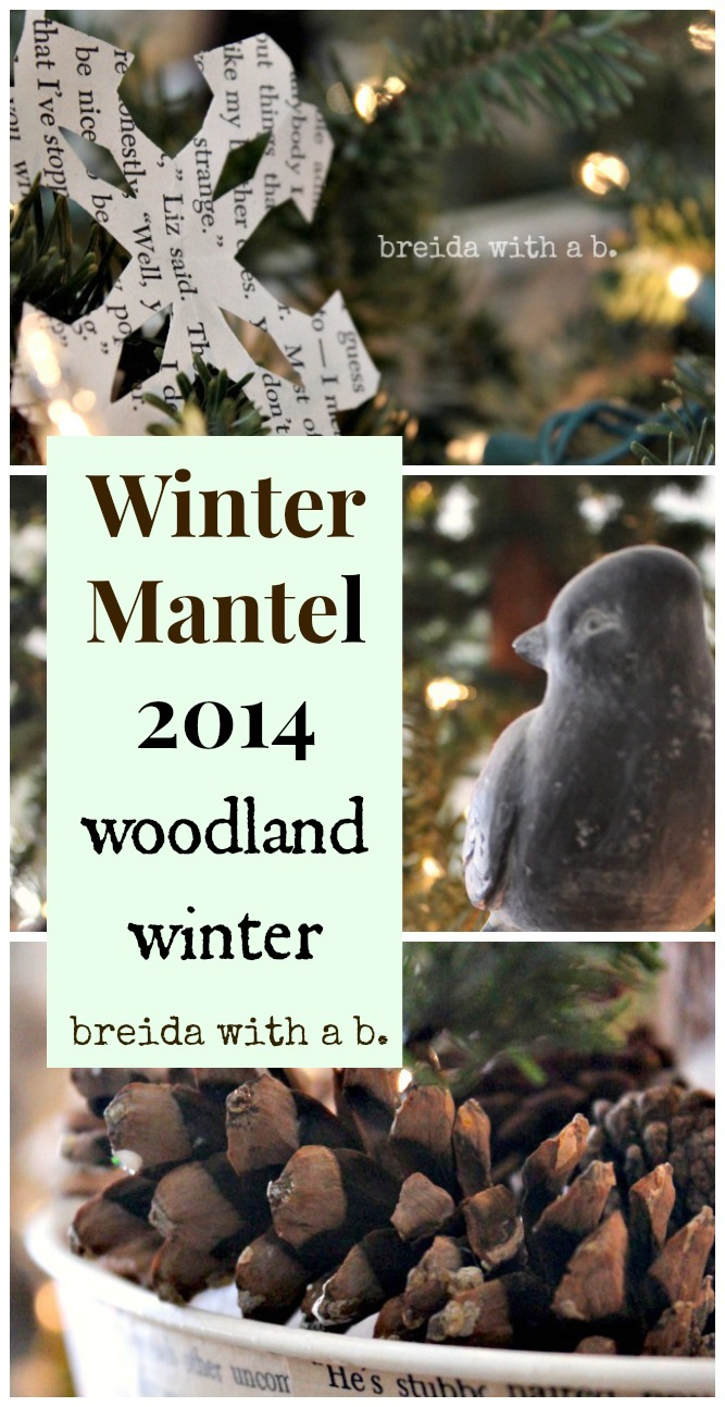 Winter Mantel at breidawithab.com